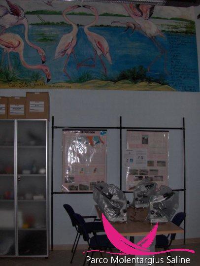 Laboratorio ambientale presso l